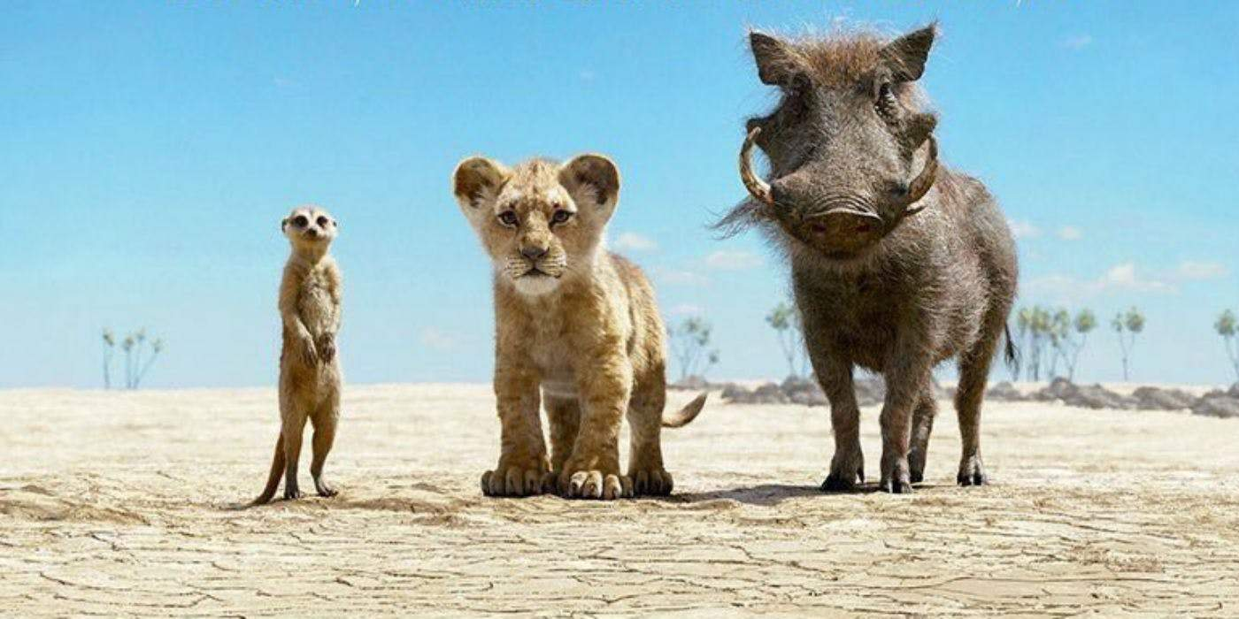 Timon And Pumba Tamil Video Song Free Download Buildingfasr